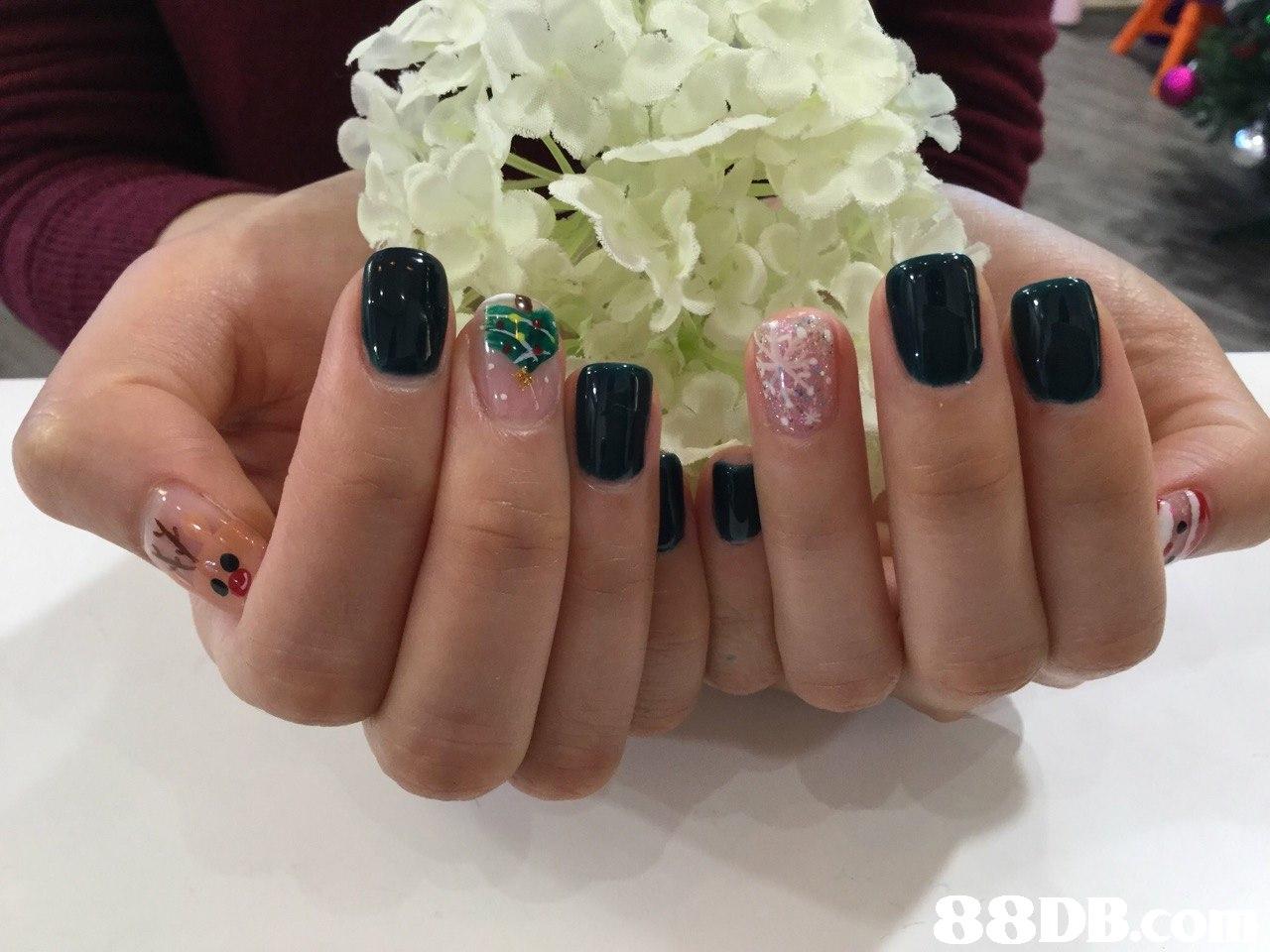 88D  nail,finger,nail care,hand,nail polish