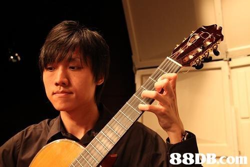 B.com  Guitar,Musical instrument,String instrument,Plucked string instruments,String instrument