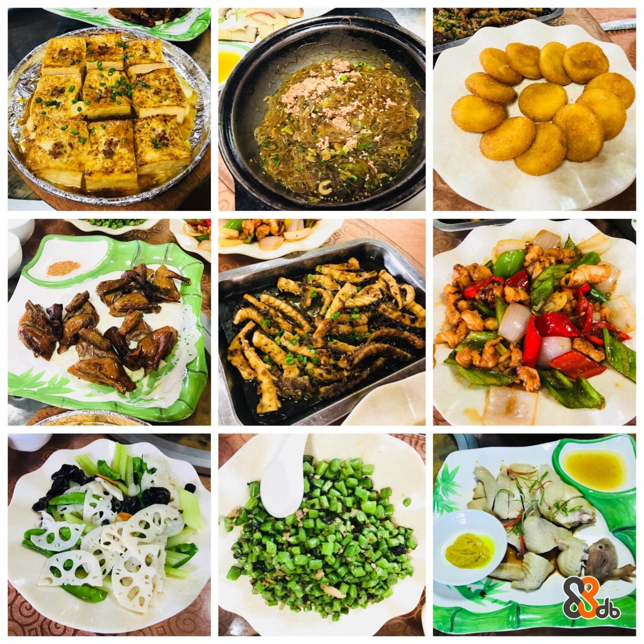 food,dish,meal,cuisine,vegetarian food