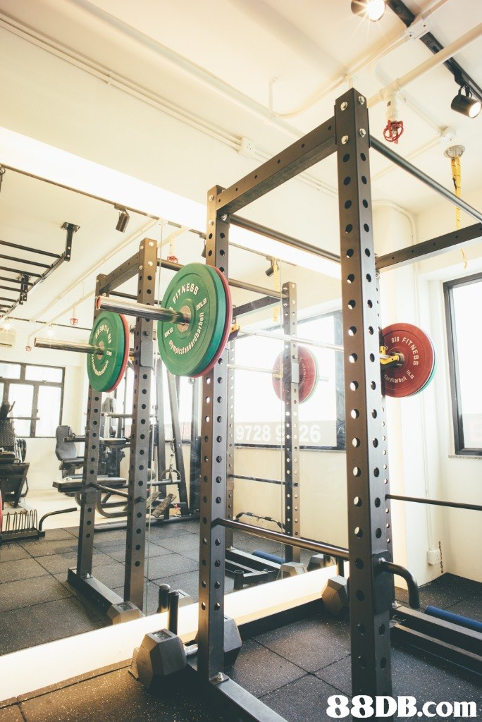 gym,structure,room,sport venue,physical fitness