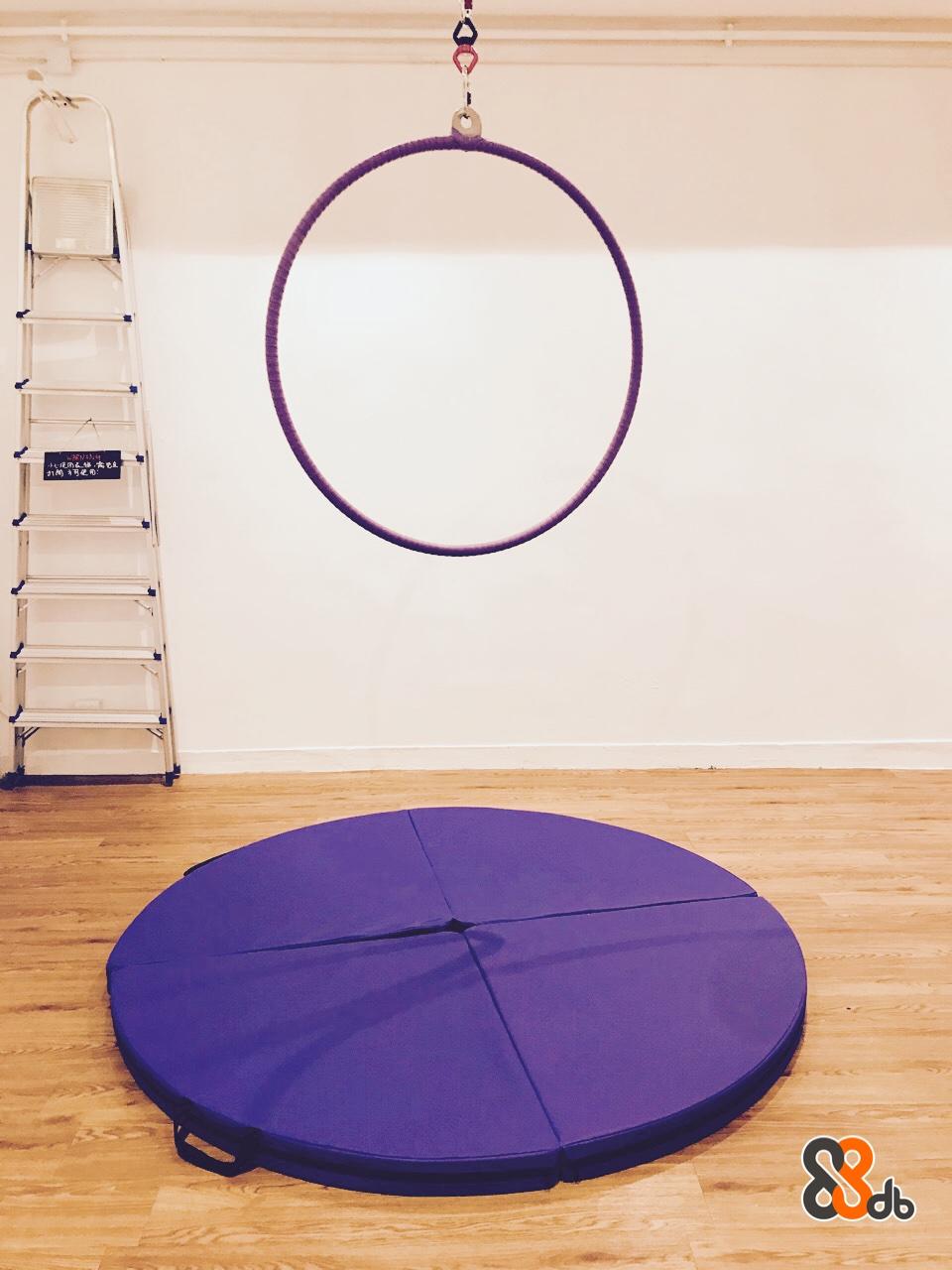 か鸬牁他司 db  purple,violet,product,table,