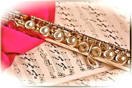 text,woodwind instrument,wind instrument,