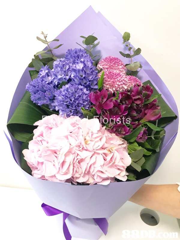 flower,lilac,flower arranging,purple,flowering plant