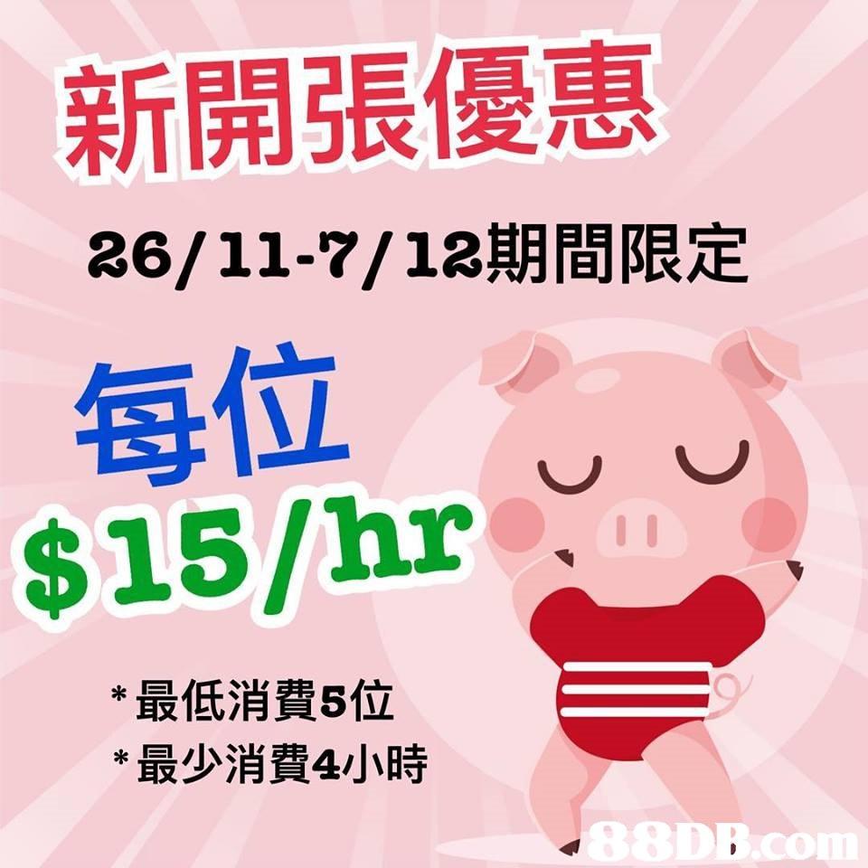 新開張優惠 26/11-7/12期間限定 每位 hr1 *最低消費5位 *最少消費4小時 88DB.co  pink,text,nose,font,smile
