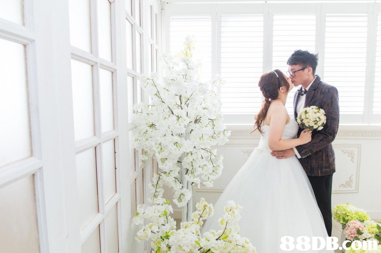 88DB  photograph,flower,gown,bride,flower arranging