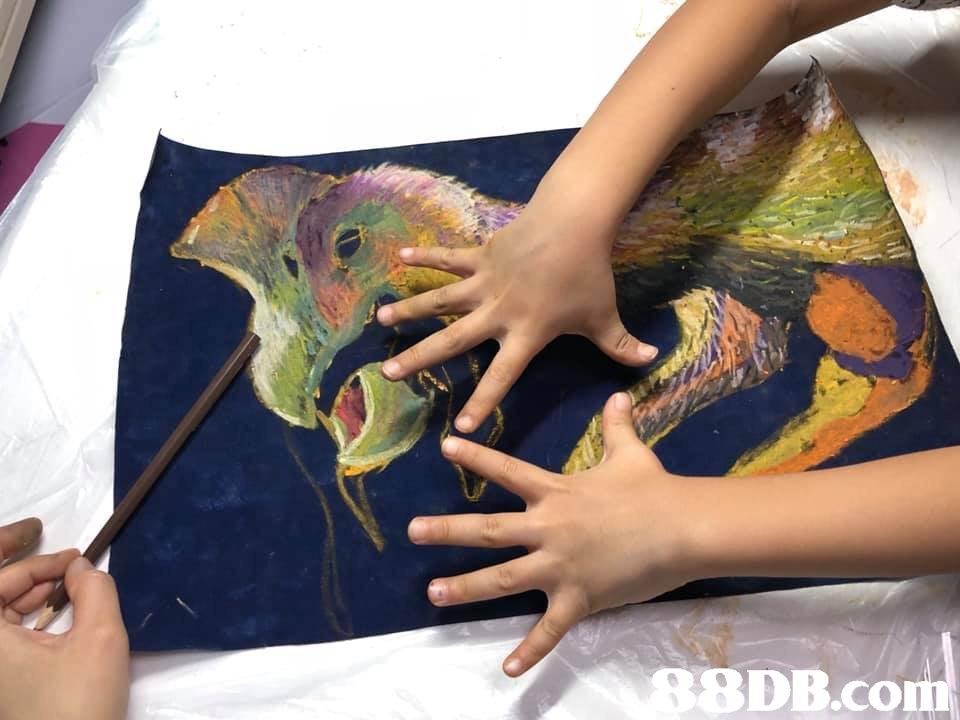 S9DB.com,finger