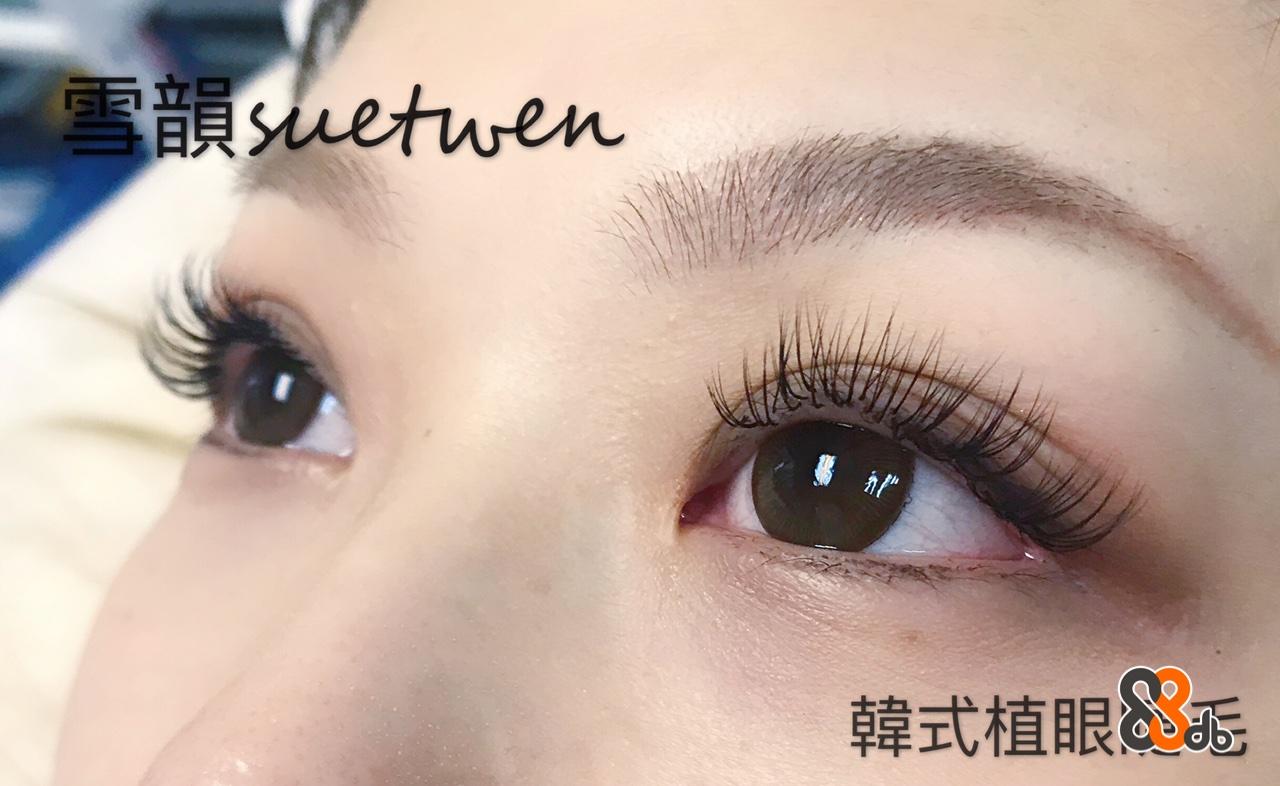 韓式植眼  eyebrow,eyelash,eye,forehead,close up
