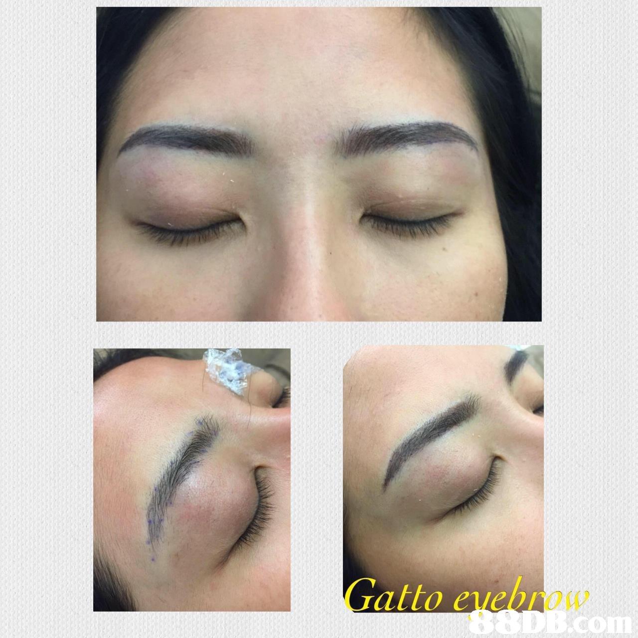 atto evebrow co  eyebrow,nose,eyelash,lip,eye shadow
