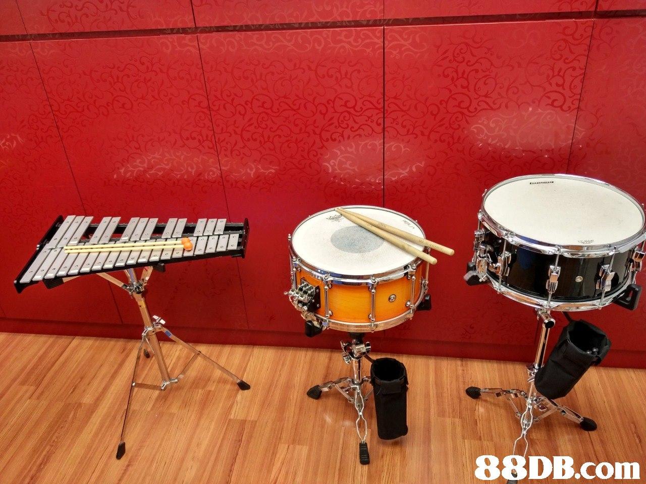 musical instrument,drum,percussion,tom tom drum,drums
