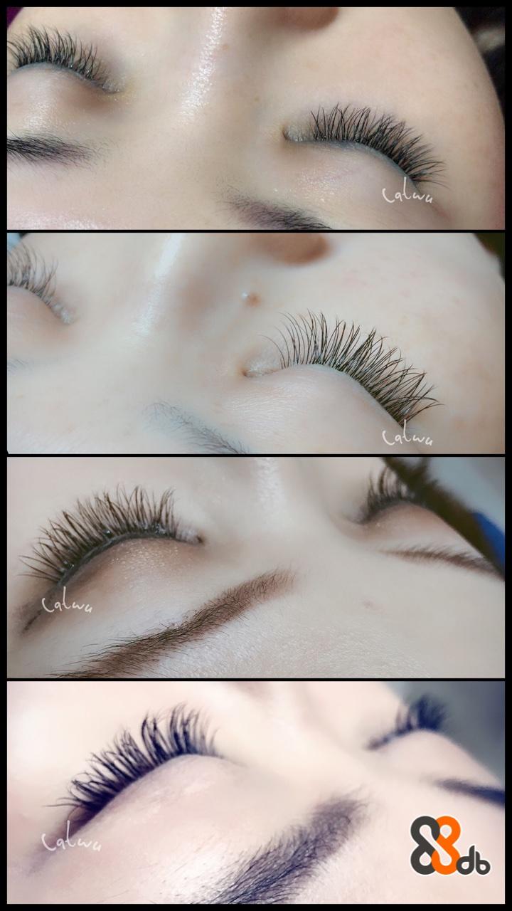 wu db  eyebrow,eyelash,beauty,eye,close up