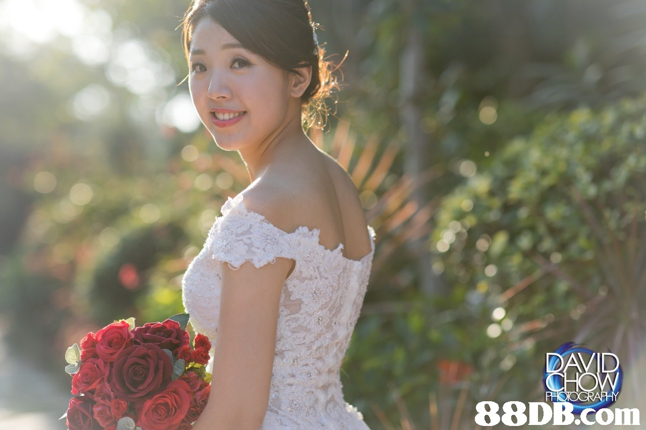 bride,gown,flower,photograph,wedding dress