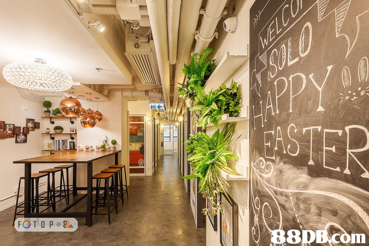 8DB.com  lobby,interior design,restaurant,real estate,ceiling