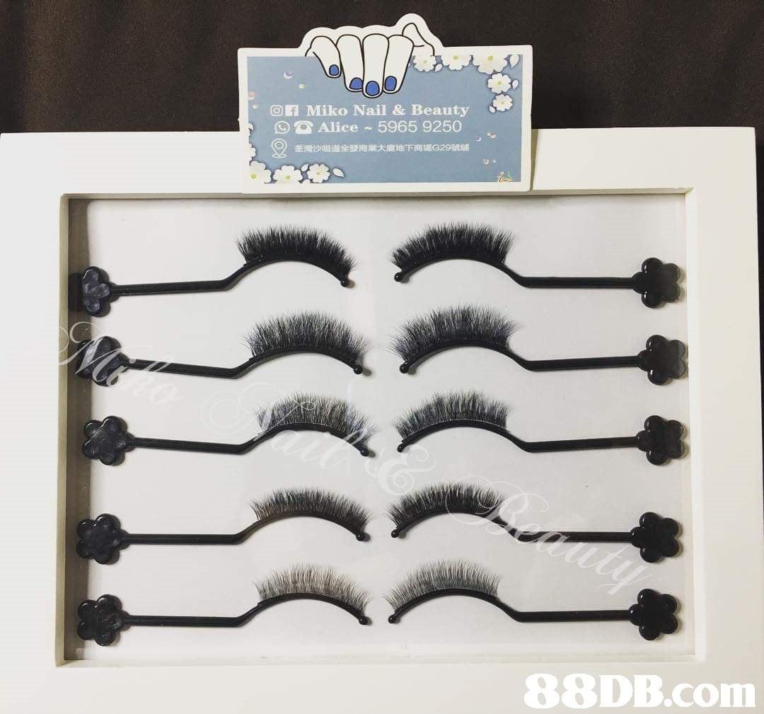 GER Miko Nail & Beauty Alice 5965 9250 荃灣沙咀道全發商業大廈地下商場G29號舖 9)   font,eyelash,product