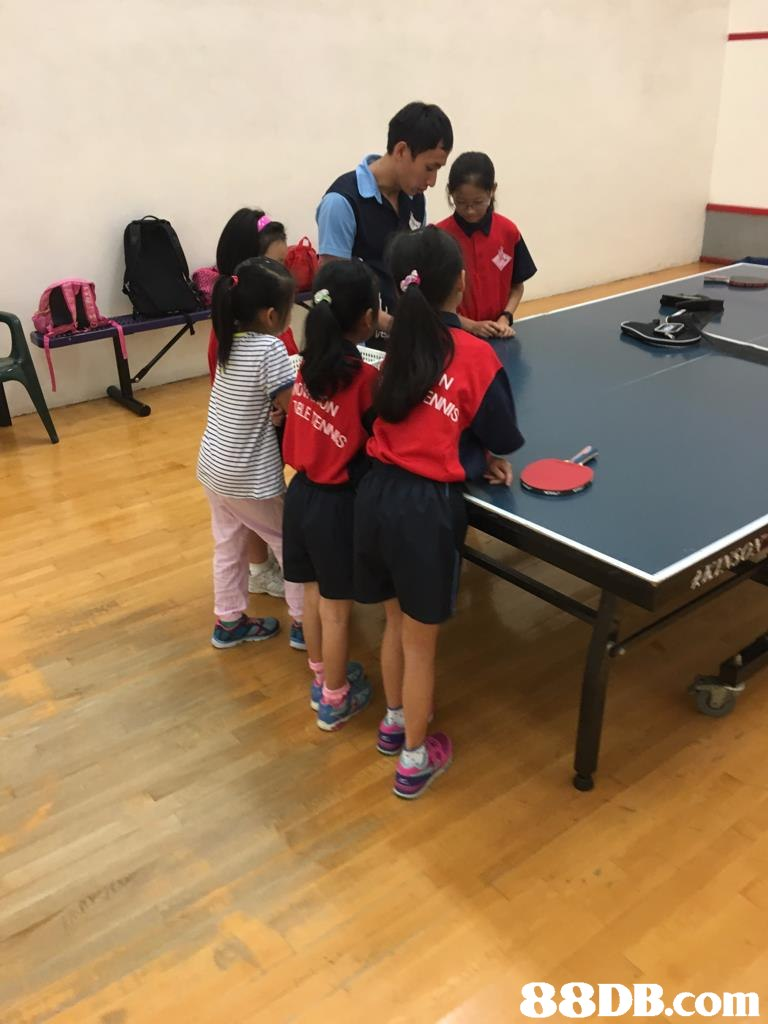 indoor games and sports,table tennis,sports,sport venue,racquet sport