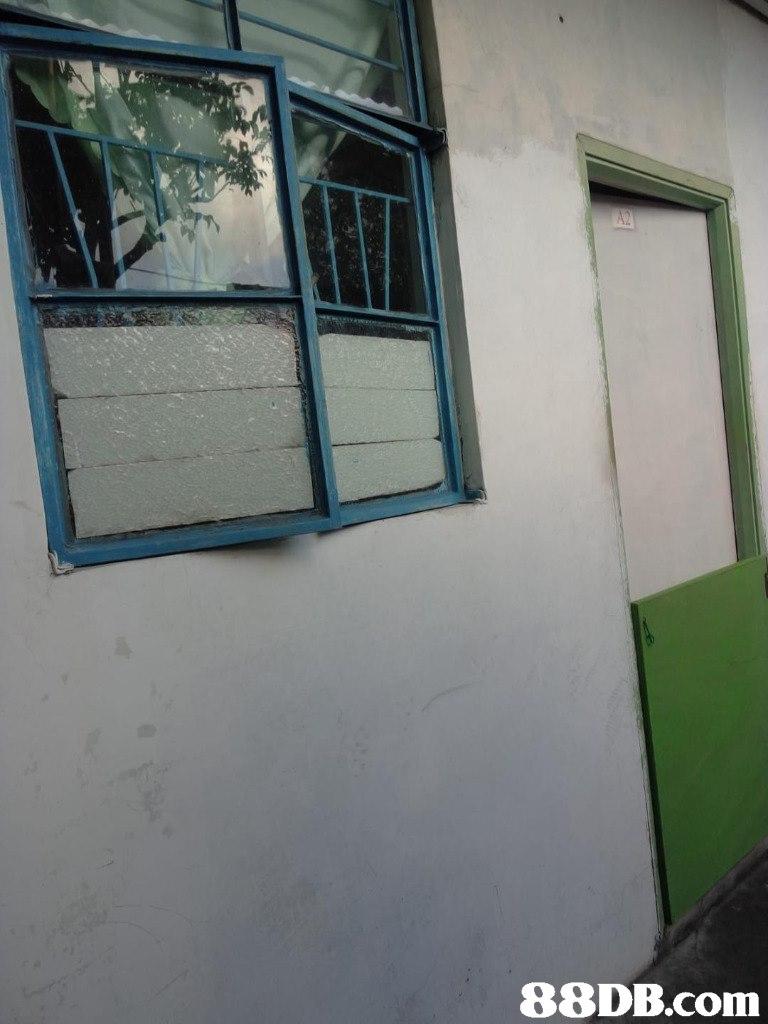 property,wall,window,house,facade