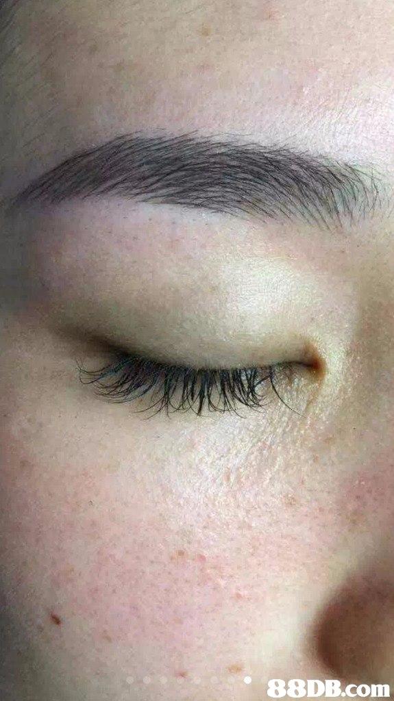 eyebrow,face,nose,eyelash,forehead