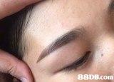 eyebrow,skin,eyelash,cheek,eye