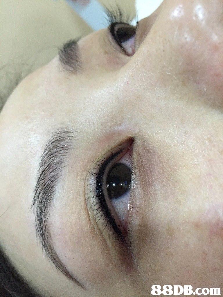 eyebrow,face,nose,skin,eyelash