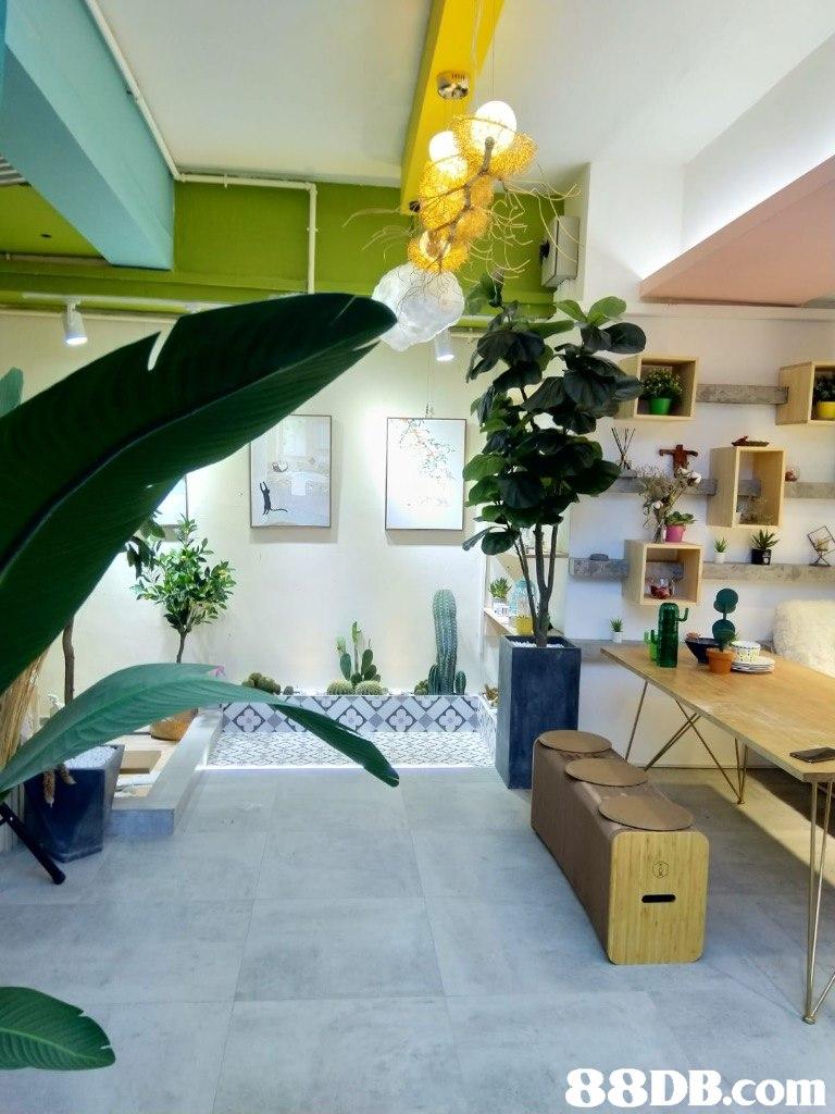 interior design,room,ceiling,home,living room