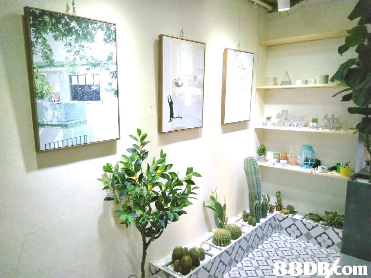 DB com  property,home,plant,flower,real estate