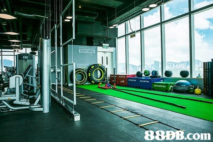 CRVING 88BB.com  gym,structure,sport venue,
