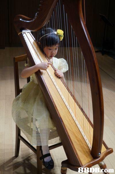 harp,konghou,clàrsach,musical instrument,traditional chinese musical instruments
