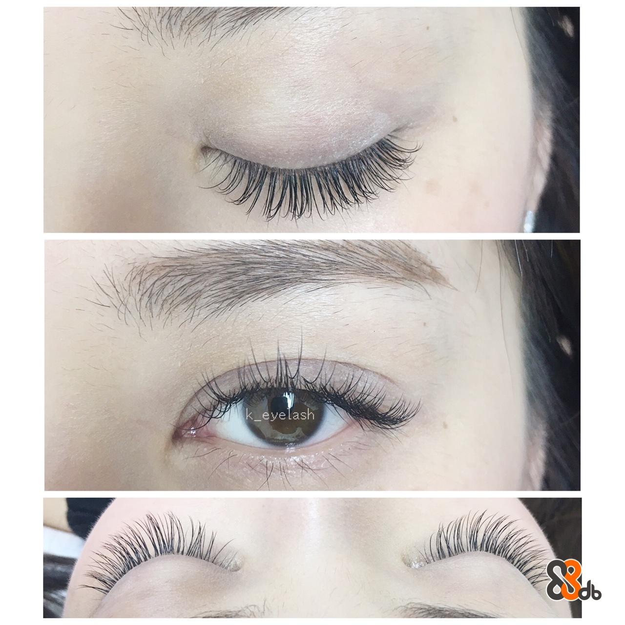 eyelash  eyebrow,eyelash,beauty,cosmetics,eye