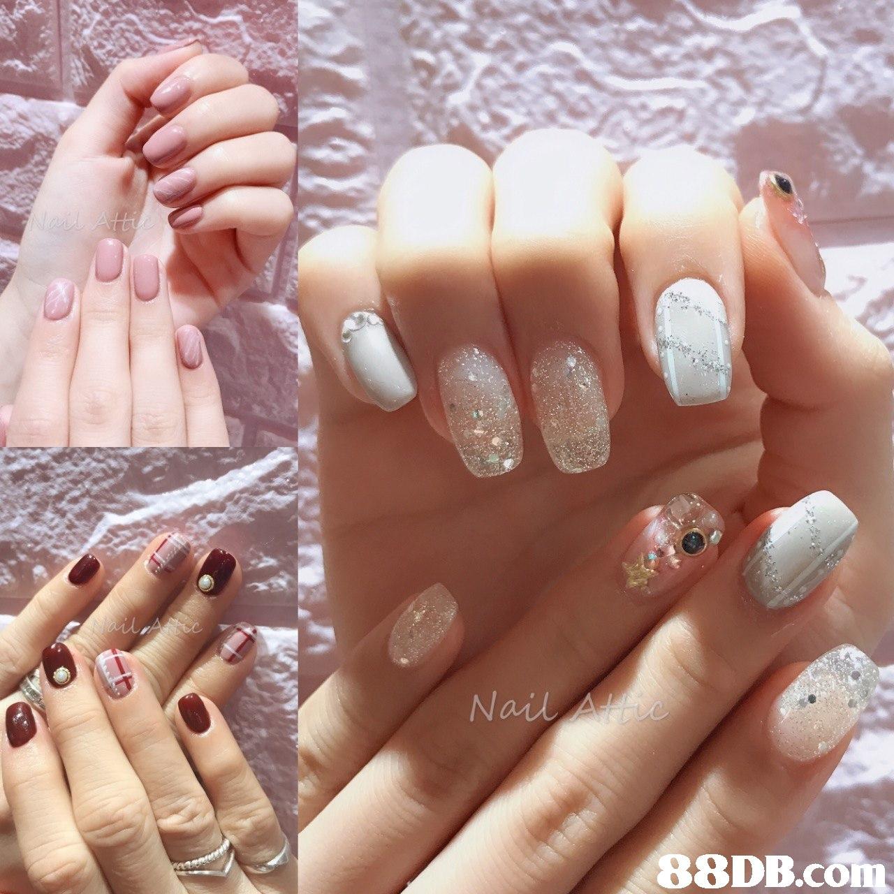 Nail 88DB.conm  nail,finger,nail care,manicure,hand