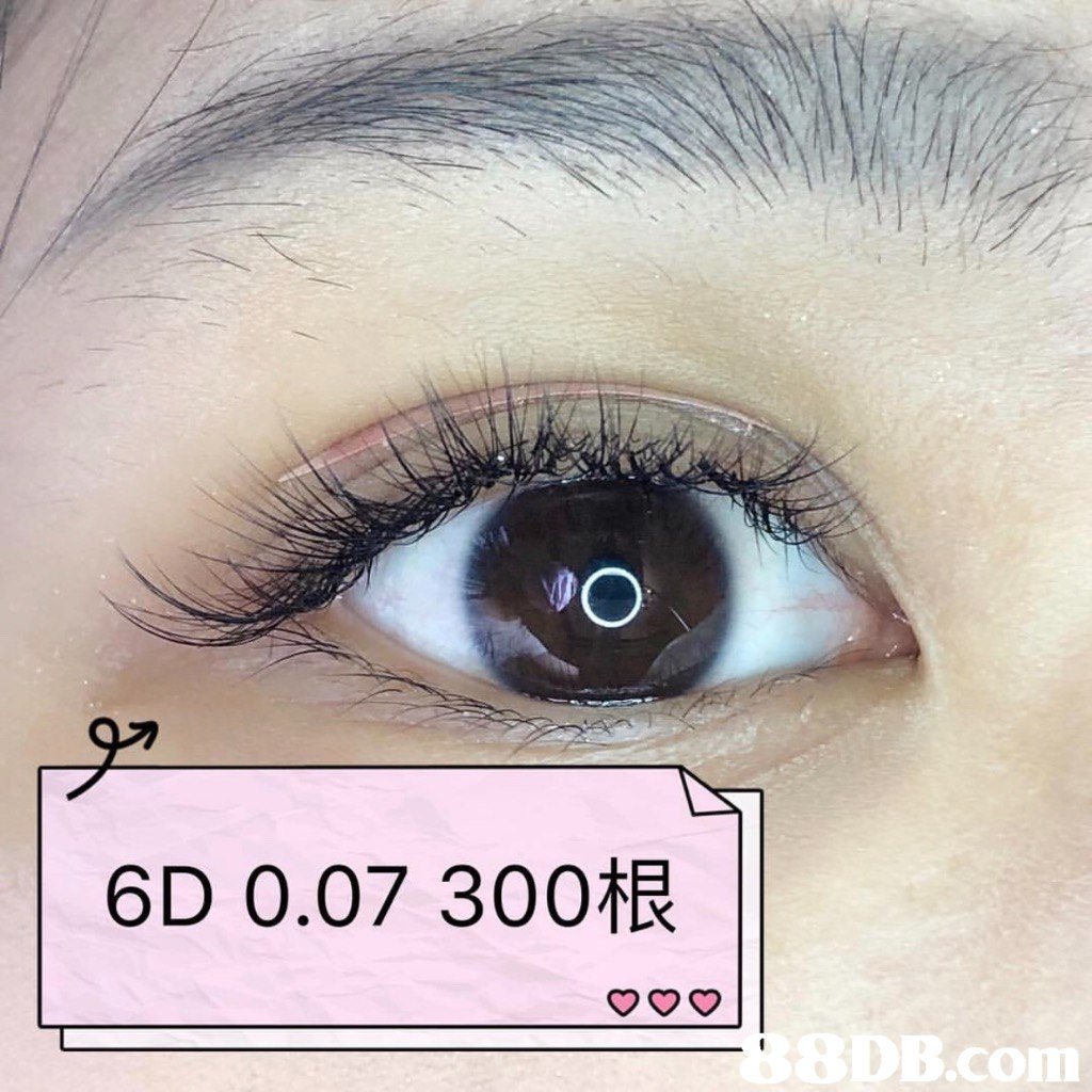 PO 6D 0.07 300根 B.com  Eyelash,Eyebrow,Eye,Iris,Cosmetics