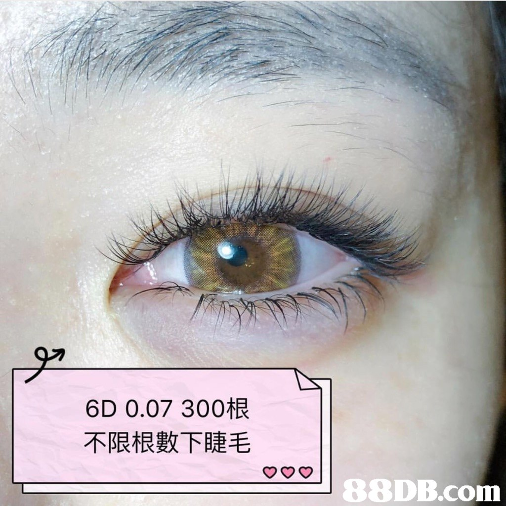 6D 0.07 300根 不限根數下睫毛   Eyelash,Eyebrow,Eye,Face,Skin