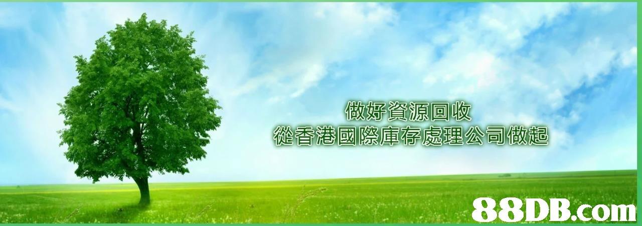 從都港 國際 庫 熟處理 公司做起   Natural landscape,Sky,Green,Nature,Grassland