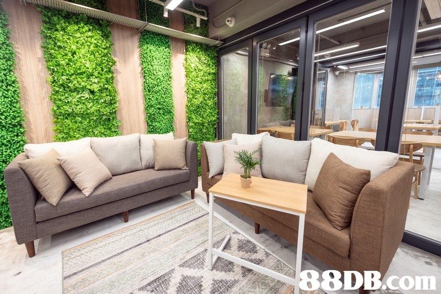 88DB.Com  Property,Furniture,Room,Building,Interior design