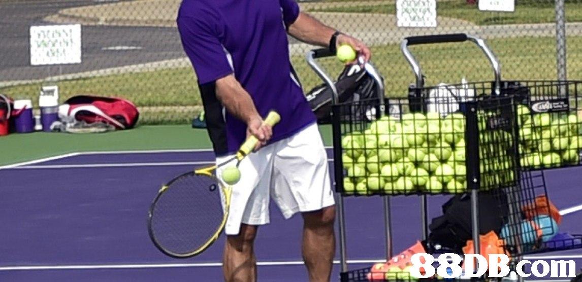 Tennis,Racket,Sports,Tennis court,Tennis racket