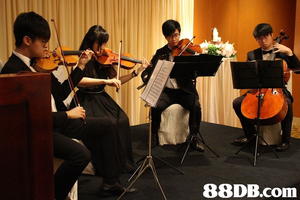 Music,Musical instrument,Violin,Viola,Classical music