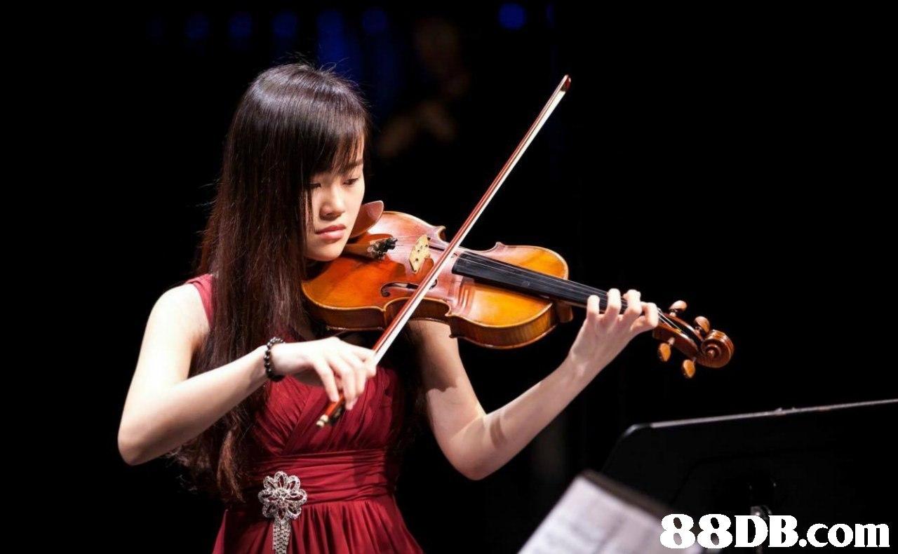 Violist,Violinist,Violin,Musical instrument,Viola