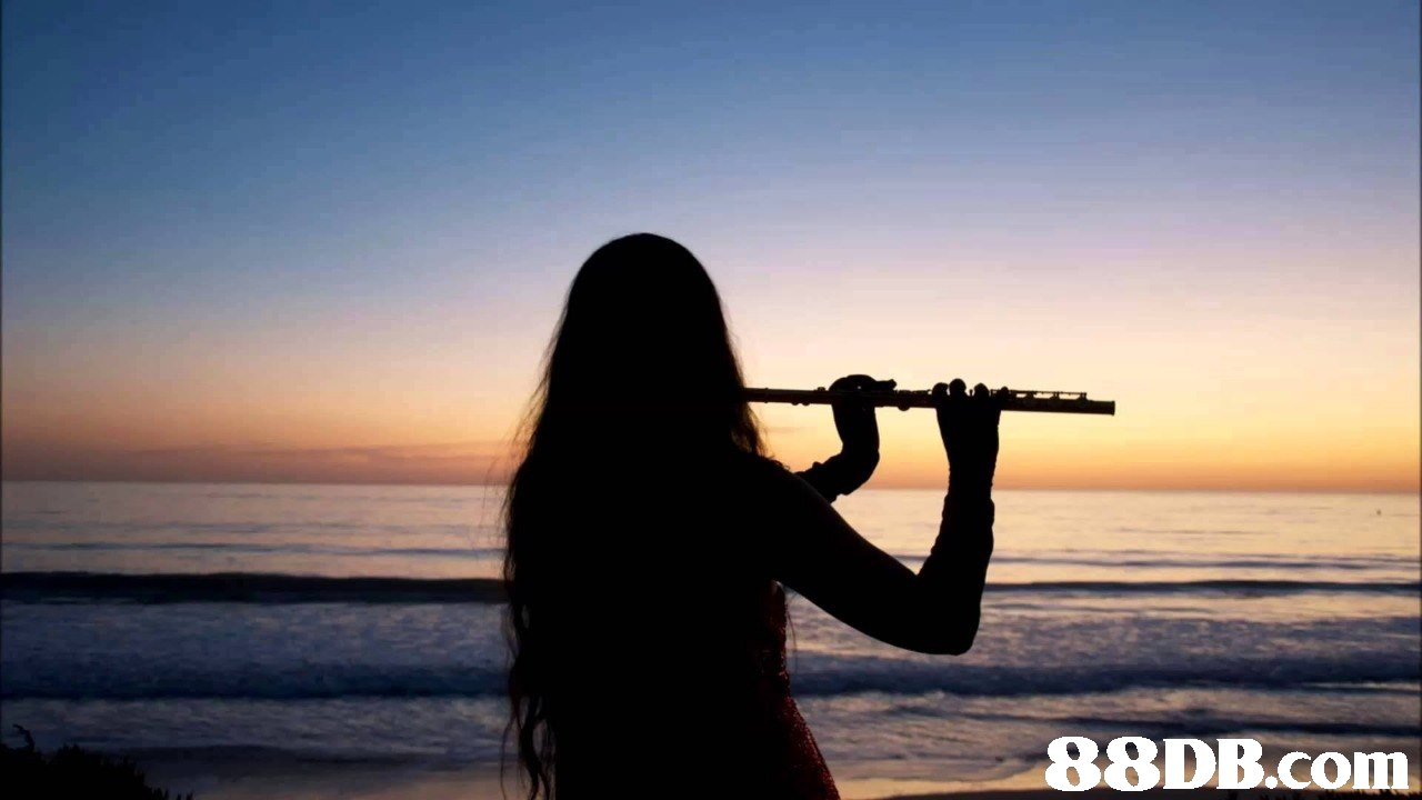 Wind instrument,Sky,Photography,Flute,