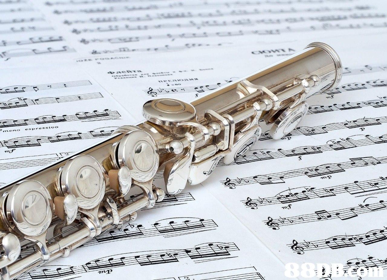 rrL eto espresstvo  Western concert flute,Sheet music,Clarinet family,flute,Music