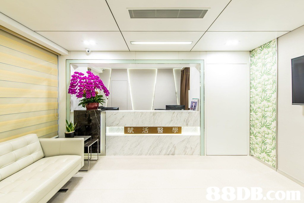 か . 賦活醫學  Interior design,Room,Property,Ceiling,Building