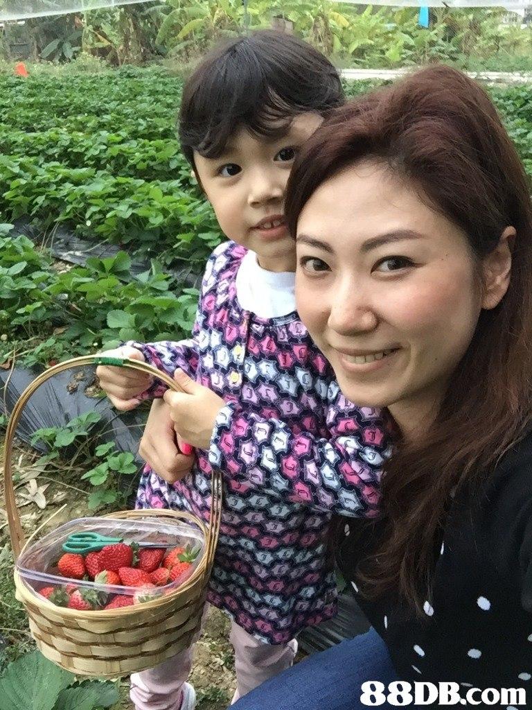 Child,Plant,Fruit,