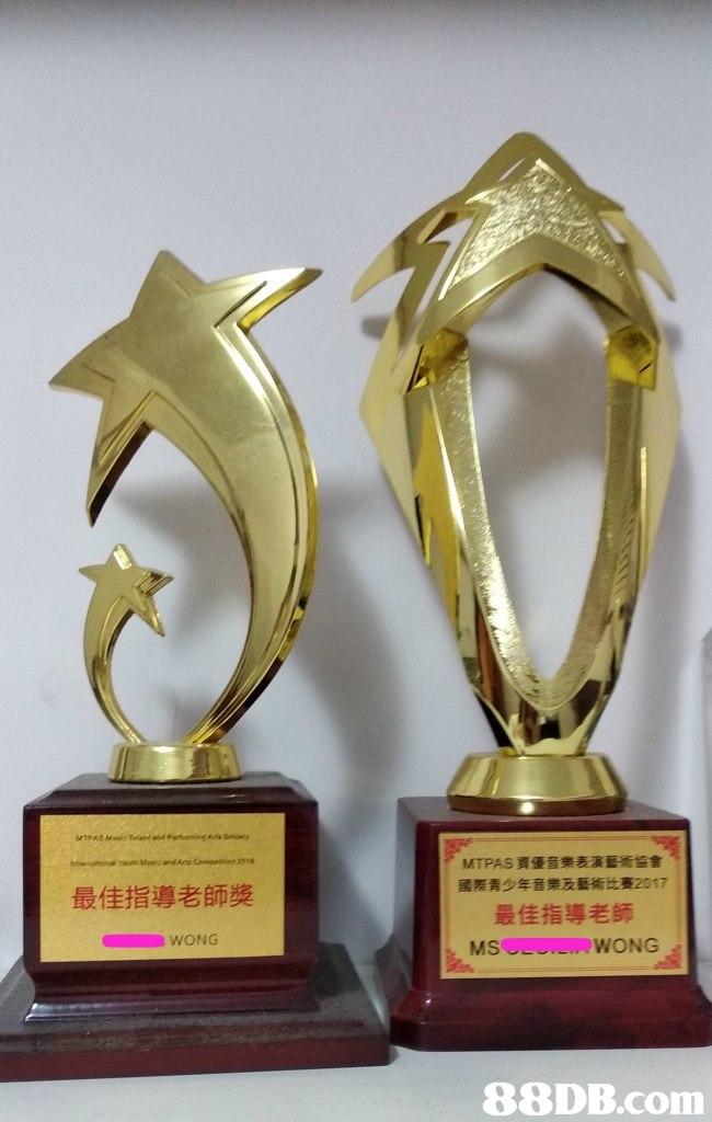 MTPAS資優音樂表演藝術協會 國際青少年音樂及藝術比賽2017 最佳指導老師 最佳指導老師獎 MSWONG   Trophy,Award,