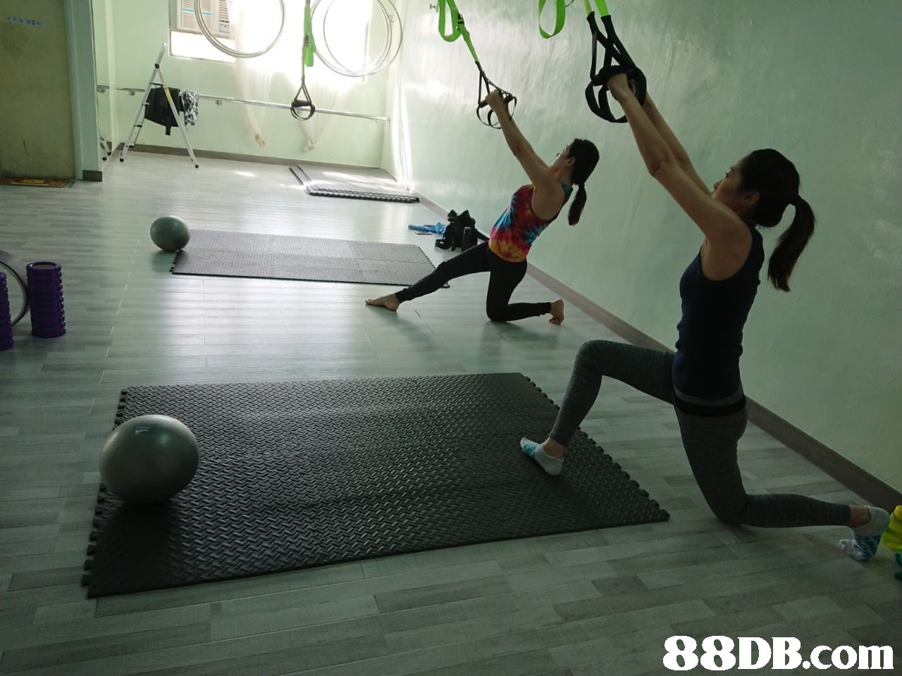 Physical fitness,Sports,Strength training,Exercise equipment,Circuit training