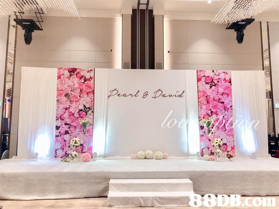 8DB.com  Pink,Decoration,Room,Product,Interior design