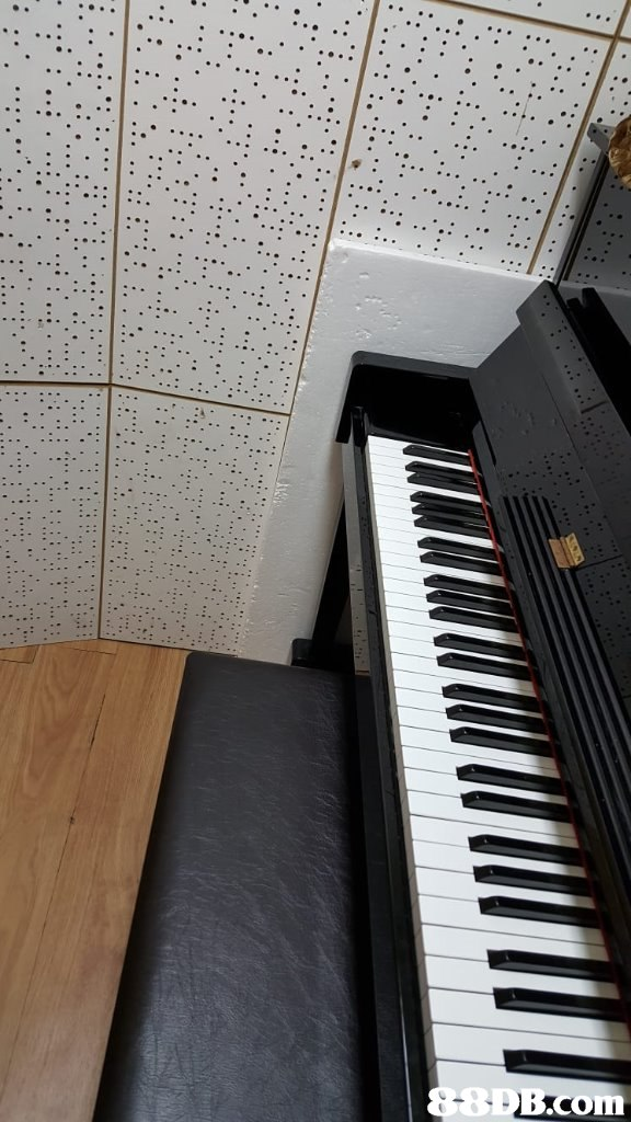 8 om  Piano,Musical instrument,Electronic instrument,Musical instrument accessory,Keyboard