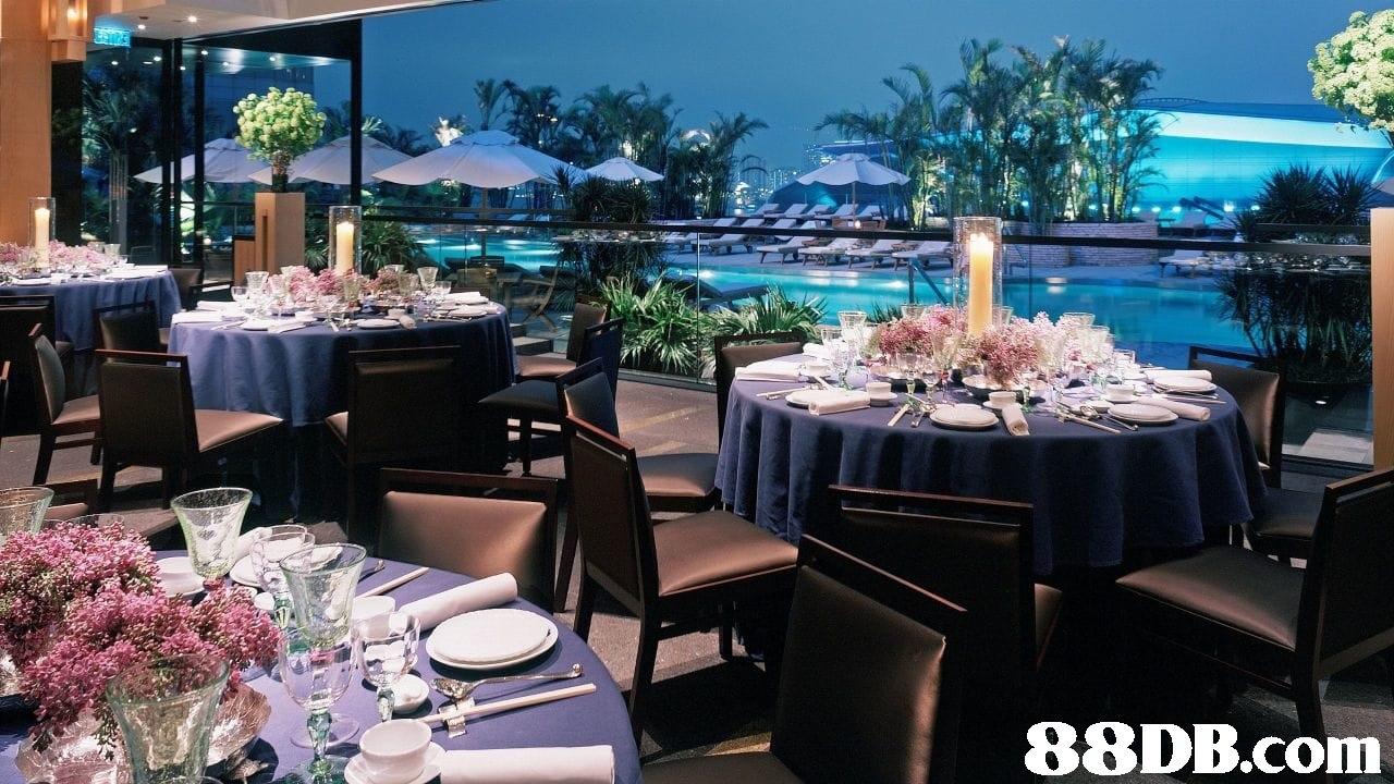 Wedding banquet,Restaurant,Banquet,Function hall,Rehearsal dinner