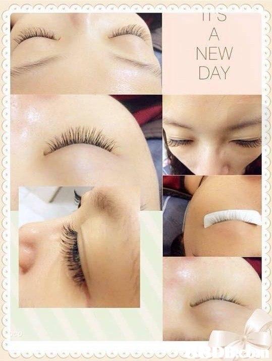 NEW DAY,Eyebrow,Eyelash,Skin,Nose,Eye