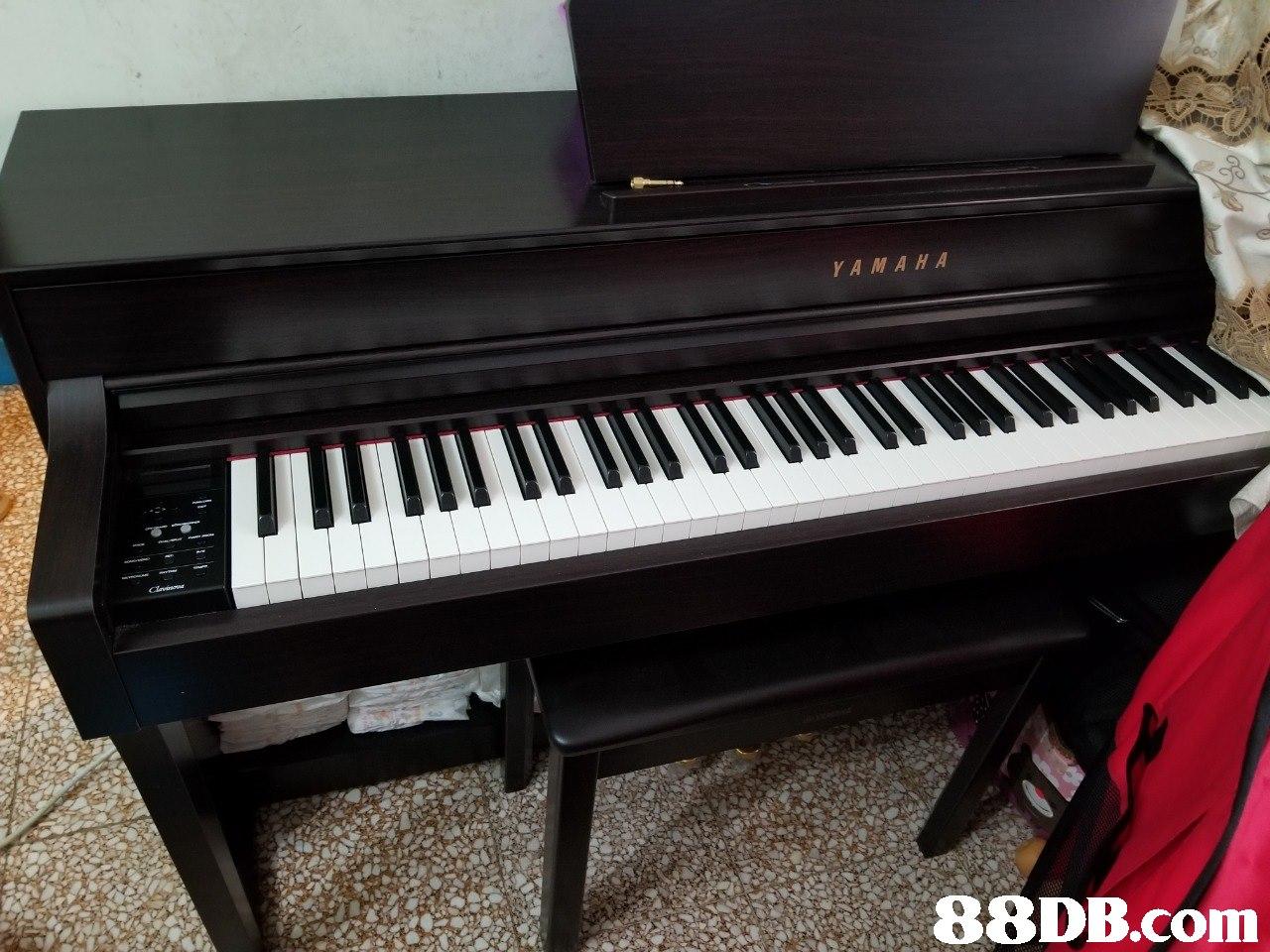 YAMAHA   Musical instrument,Piano,Electronic instrument,Keyboard,Musical instrument accessory