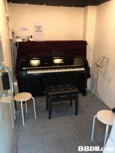 Piano,Property,Room,Digital piano,Musical instrument