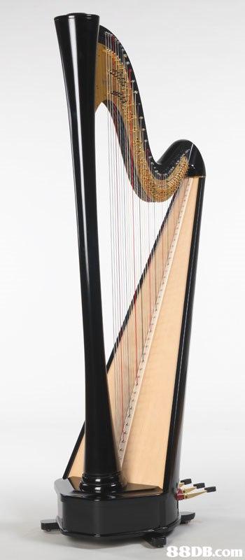 Harp,Clàrsach,Konghou,Musical instrument,String instrument