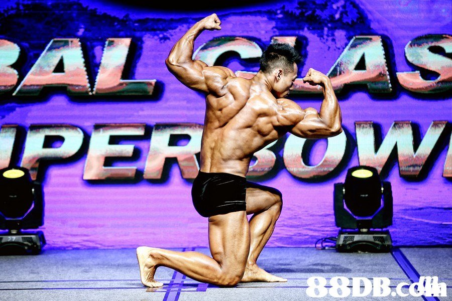 88DB.c  Bodybuilding,Bodybuilder,Muscle,Physical fitness,Competition event