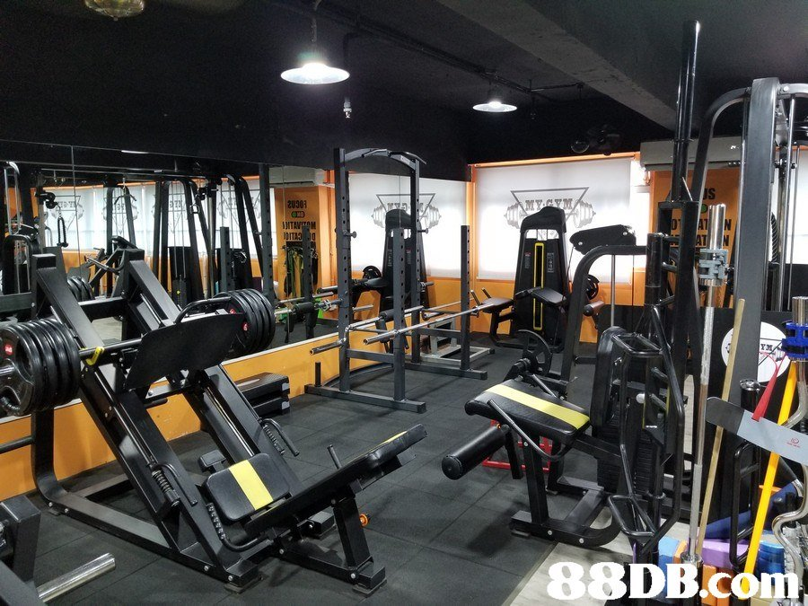 IS 20303 88DB com  Gym,Sport venue,Room,Physical fitness,Weight training